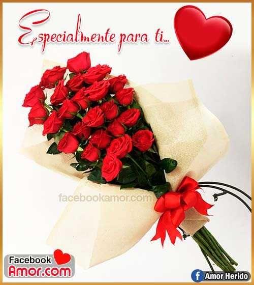 Ramo De Rosa Amor Rosas Rojas Frases Frases De Amor Y Amor