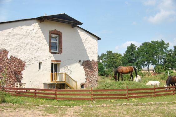 Elbschloss Kehnert ... tolles Urlaubsziel mit Kindern und für Pferdeliebhaber