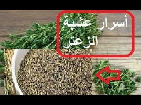 أسرار عشبة الزعتر وفوائدها المدهشة مع طرق إستعمالها الصحيحة How To Dry Basil Herbs Basil
