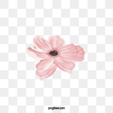 Beautiful Png Vector Psd And Clipart With Transparent Background For Free Download Pngtree Flower Png Images Flower Border Png Flower Frame Png