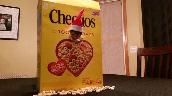 Cheerios are an elves favorite apparently
