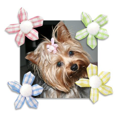Gingham Ribbon Flower Dog Hair Bows