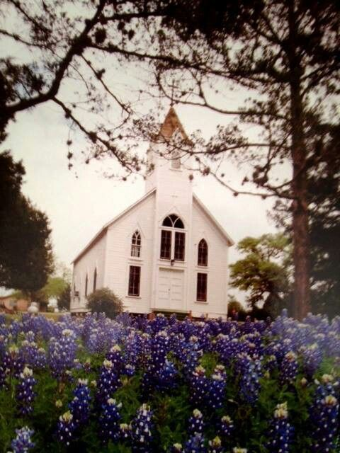 Small Texas Hill Country Church surrounded by Texas Bluebonnets.