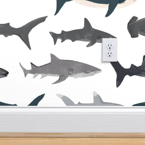 Shark Sharks Nautical Boys White Back In 2020 Boy Room Accent Wall Cool Boys Room Shark Boys Room