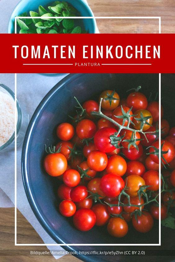 Nice The best Tomatensorten ideas on Pinterest Tomatenpflanzen Tomaten pflanzen and S en