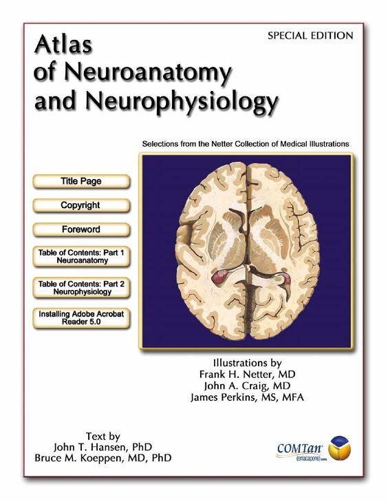 netter-neuro-atlas by doctor2013 via Slideshare
