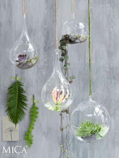 Dé manier om planten en bloemen te presenteren. Met de glazen bollen maak je prachtige hangende tuintjes. De bol hangt aan een stoer touw.