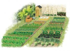 Nourrir toute la famille avec le potager. Sur ce dessin : un jardin pour 4 personnes - H. - Rustica