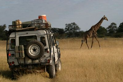 land rover africa - Google Search