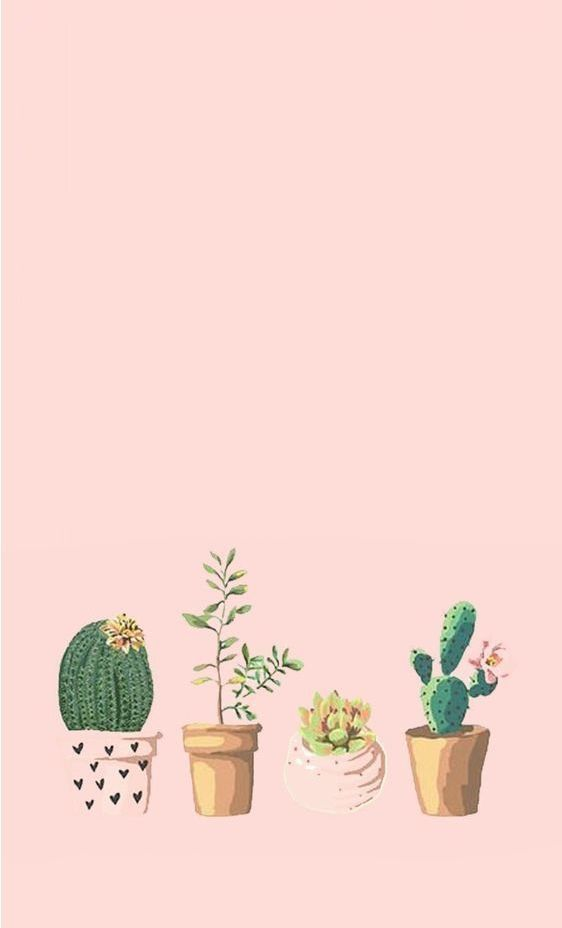 Pin By Orianna On Art Pastel Iphone Wallpaper Succulents Wallpaper Iphone Wallpaper Images