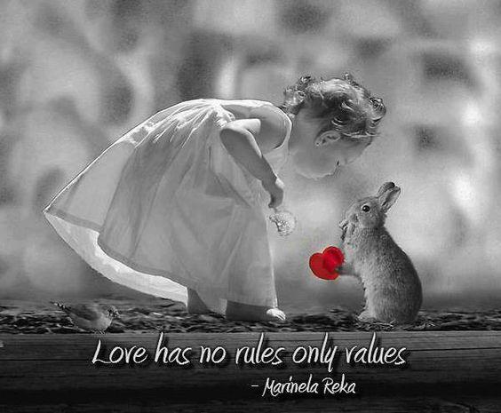 """""""O amor não tem regras, apenas valores"""""""