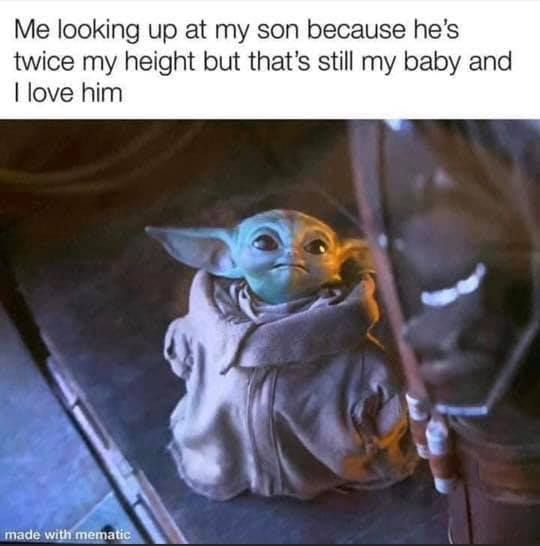 Pin By Debbie Aden On Parenting Yoda Funny Yoda Meme Funny Babies