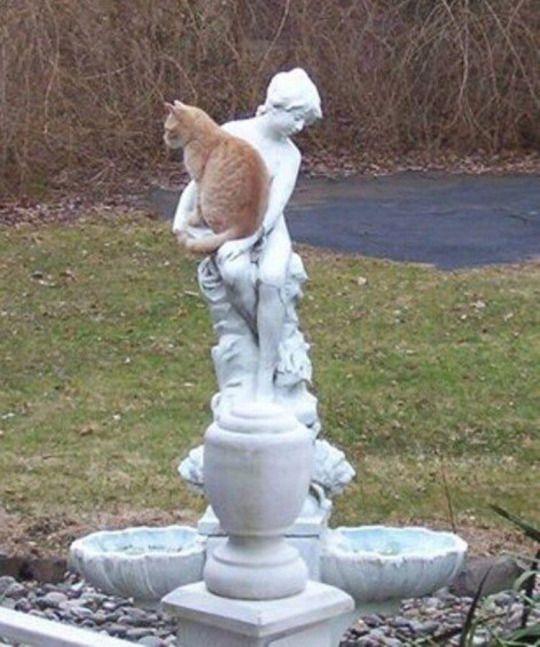 If I fits I sits: