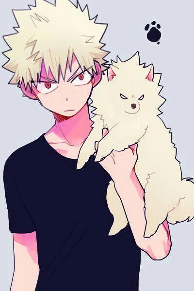 Bakugou Katsuki Is The Type Of Boyfriend Hero My Hero Boku No Hero Academia