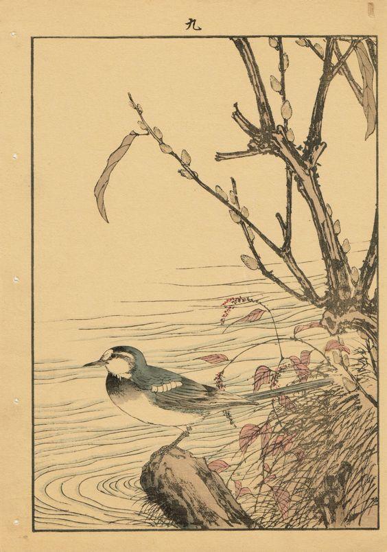 "Japanese Antique Original Woodcut Print Imao Keinen ""Riverside willow Wagtail"""