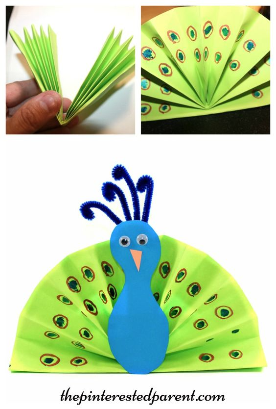 Construction paper fan peacock craft - kid's arts and crafts