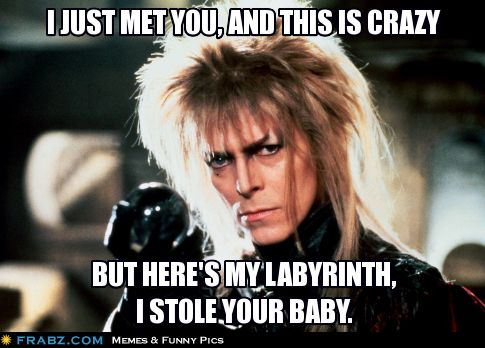 I just met you, and this is crazy...But here's my Labyrinth, I stole your Baby....