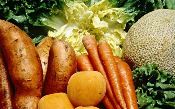 RENOVAÇÃO: Substâncias bioativas possuem as propriedades anti...