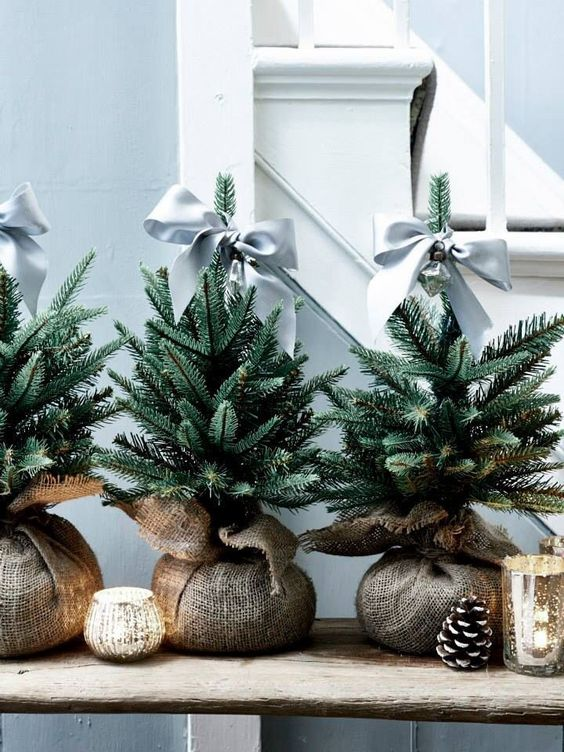 Burlap wrapped tiny Christmas trees.  Holiday table scape ideas.   Cute holiday decor.