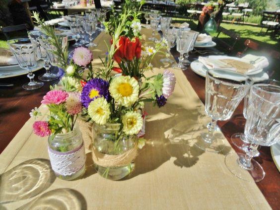 violamalva flowers and more