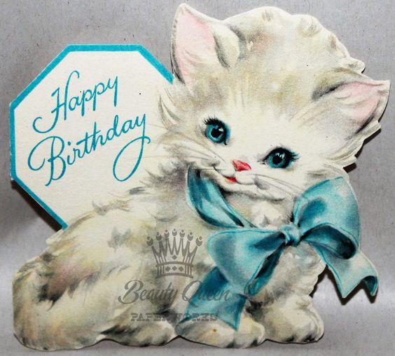 Sweetest Fluffy White Kitten Blue Bow Blue Eyes