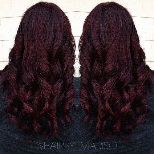 Dark burgundy hair, Cheveux bordeaux and Couleur bourgogne on ...