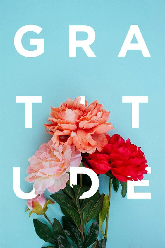 Gratitude by Khuong Pham                                                                                                                                                                                 More