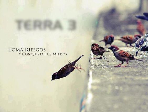 Visita: www.facebook.com/24hRoberto