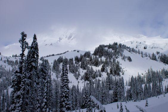 Mount Rainier Hiding