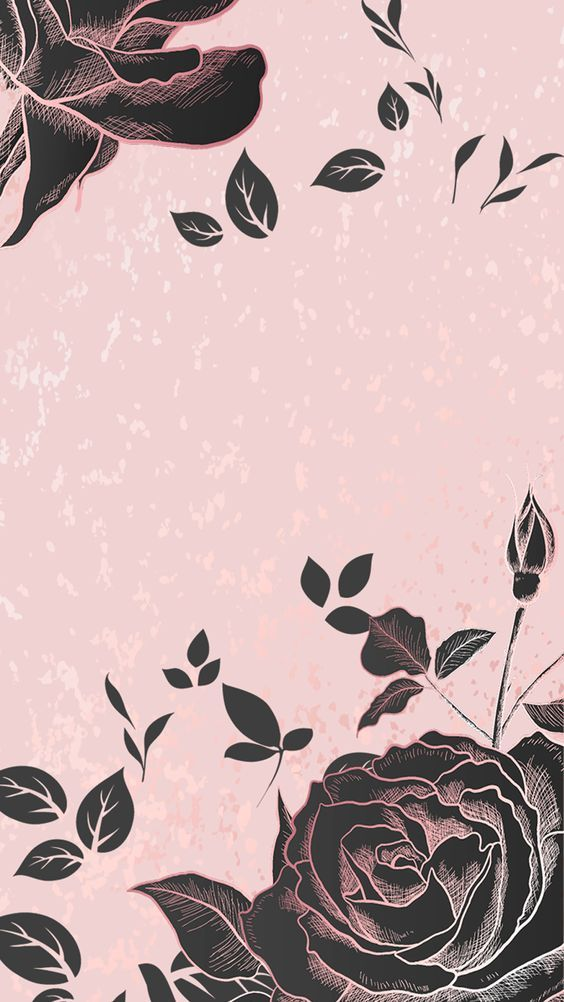 Black Roses Pink Wallpaper Iphone Witchy Wallpaper Beautiful Wallpapers Backgrounds