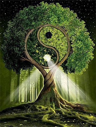 Tree of Life: symbol of growth, wisdom, protection, bounty, redemption. with yin and yang.: