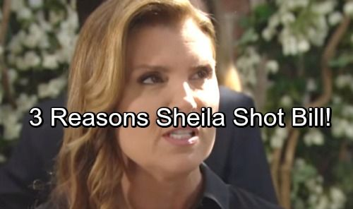 The Bold And The Beautiful Spoilers Three Reasons Why Sheila Shot Bill Spencer