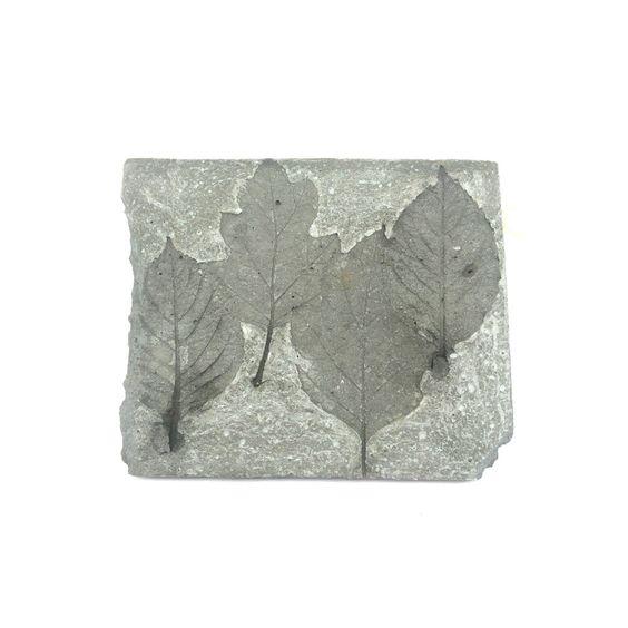 Cement Garden Art: Leaf Imprinted Concrete Slab