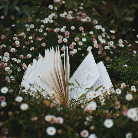 • books, books, books •