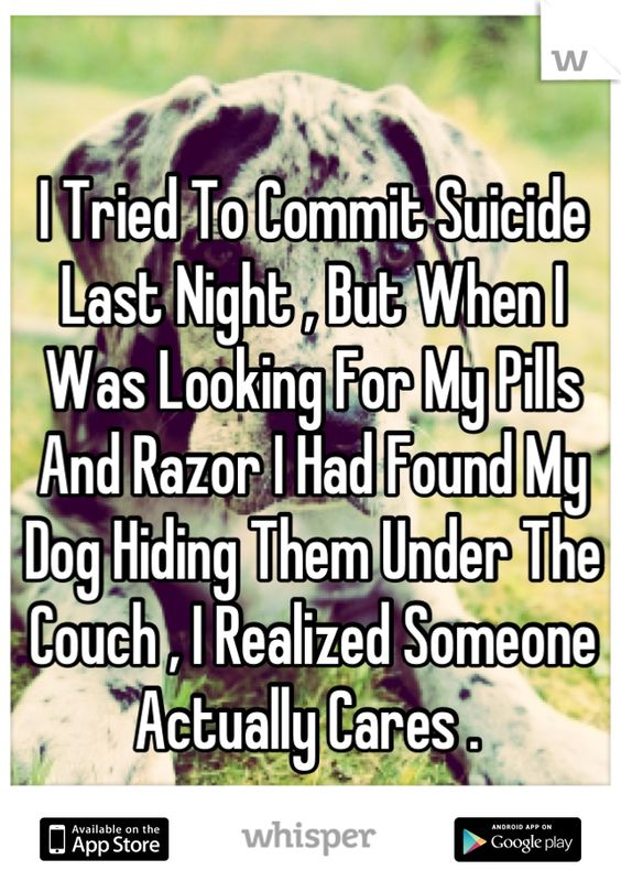 I Tried To Commit Suicide Last Night , But When I Was Looking For My Pills And Razor I Had Found My Dog Hiding Them Under The Couch , I Realized Someone Actually Cares .