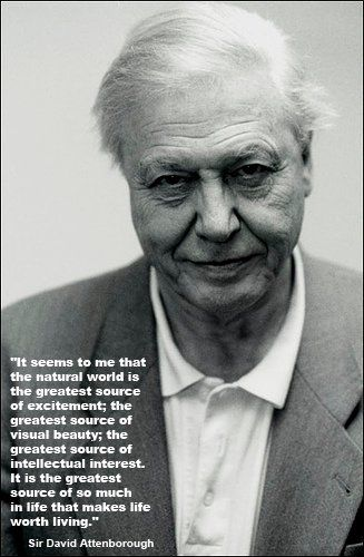 Sir David Attenborough, Naturalist and a national treasure in Britain; strongly opposes creationism.