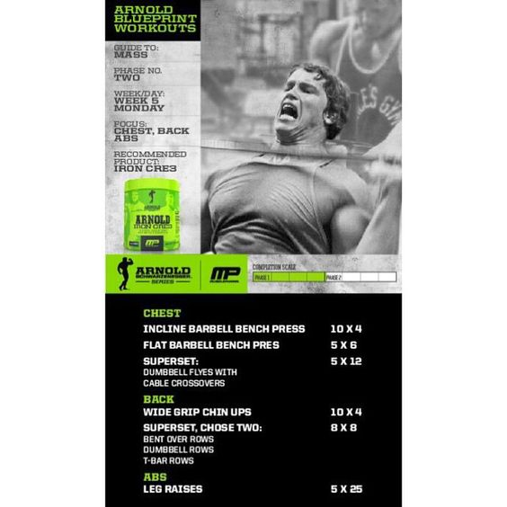 Mp workout of the day arnold blueprint to mass chestbackabs arnold blueprint to mass chestback malvernweather Images