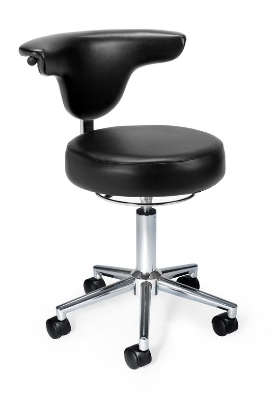 anatomy low back office chair anatomy office