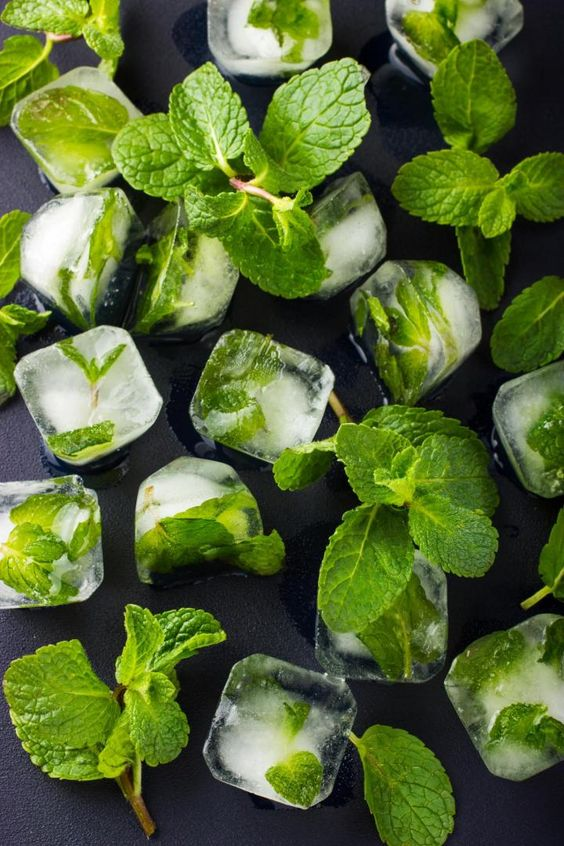Mint ice cubes, from Old Farmer's Almanac (great for iced tea, or water)!: