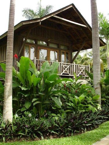 Tropical Landscape Design Pictures Remodel Decor and