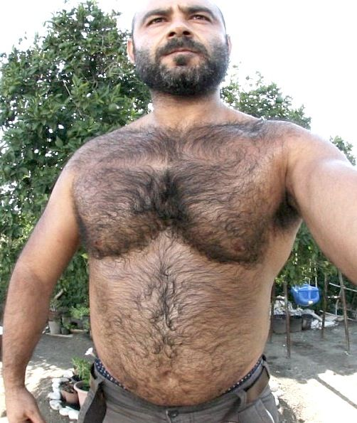 Gay hairy bear