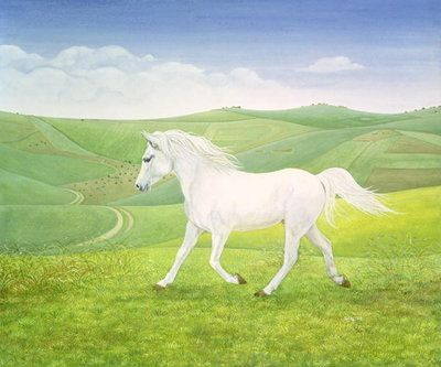 The Landscape Horse  by Ditz
