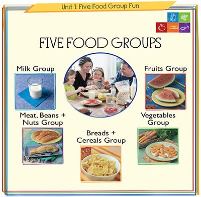 Teach kindergarten students about the 5 food groups with these fun ...