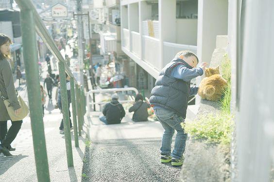 Kid + cat = adorable