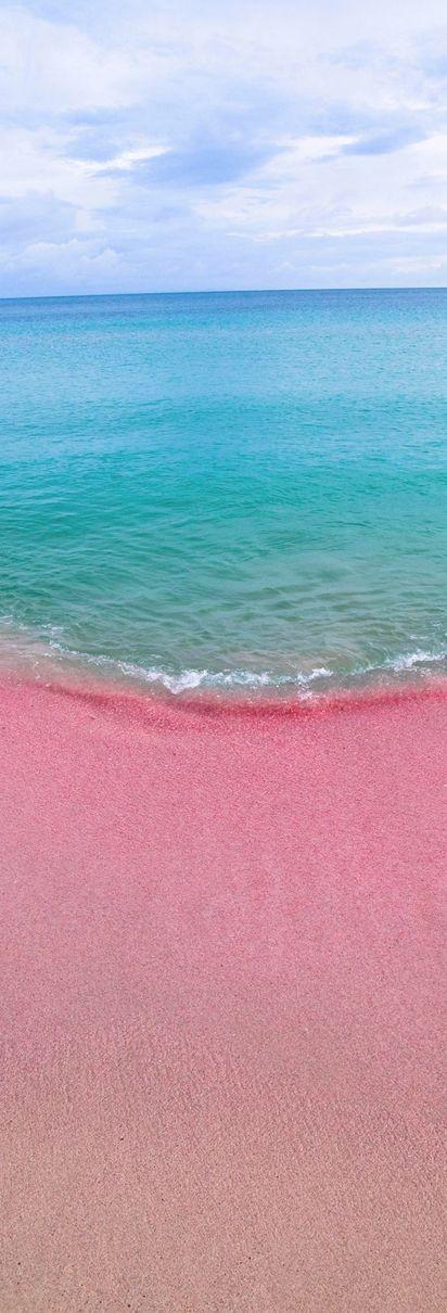 Pink Sand beachs of Barbuda - Antigua and Barbuda, a twin-island nation between the Caribbean Sea and the Atlantic Ocean