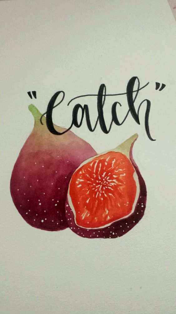 """catch"" tsoa credit goes to my friend skylar:"