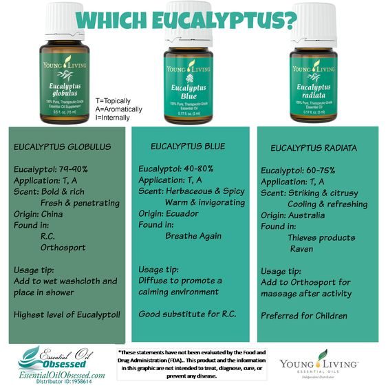 "Eucalyptus, Eucalyptus, Eucalyptus There are over 700 species of eucalyptus according to wikipedia.  So when you buy an oil that is just labeled as ""eucalyptus"", which of these 700 species are you..."