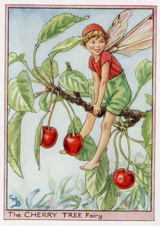 Cherry Tree Flower Fairy Vintage Print, c.1950 Cicely Mary Barker Book Plate Illustration via Etsy: