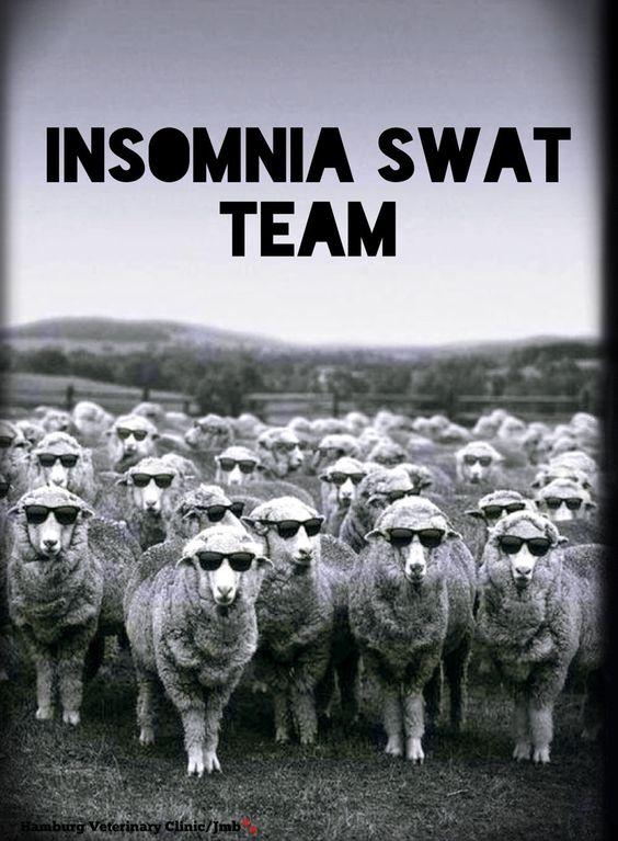 Insomnia   Can't sleep   So tired   Close your eyes   Need to sleep   Counting sheep   Time for bed   Animal humor   Long day   Longer night! Having a bit of Insomnia? Hope you won't need this team tonight! Here's to sleeping eventually!! Good Night, friends.