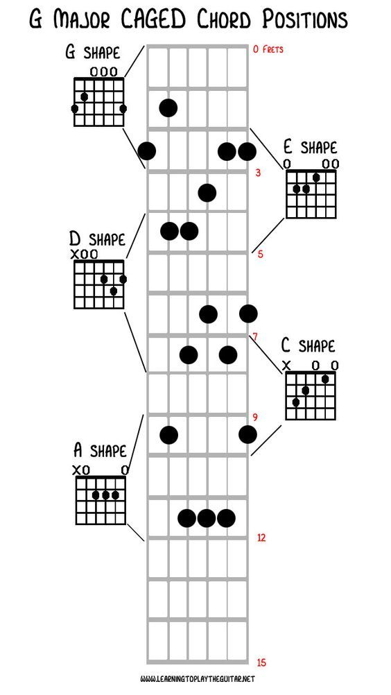 You Re Never Too Old To Play The Guitar Learn How To Play A Guitar For Beginners Step By Step Guitarlessons G Gitaar Leren Gitaarlessen Muziektheorie